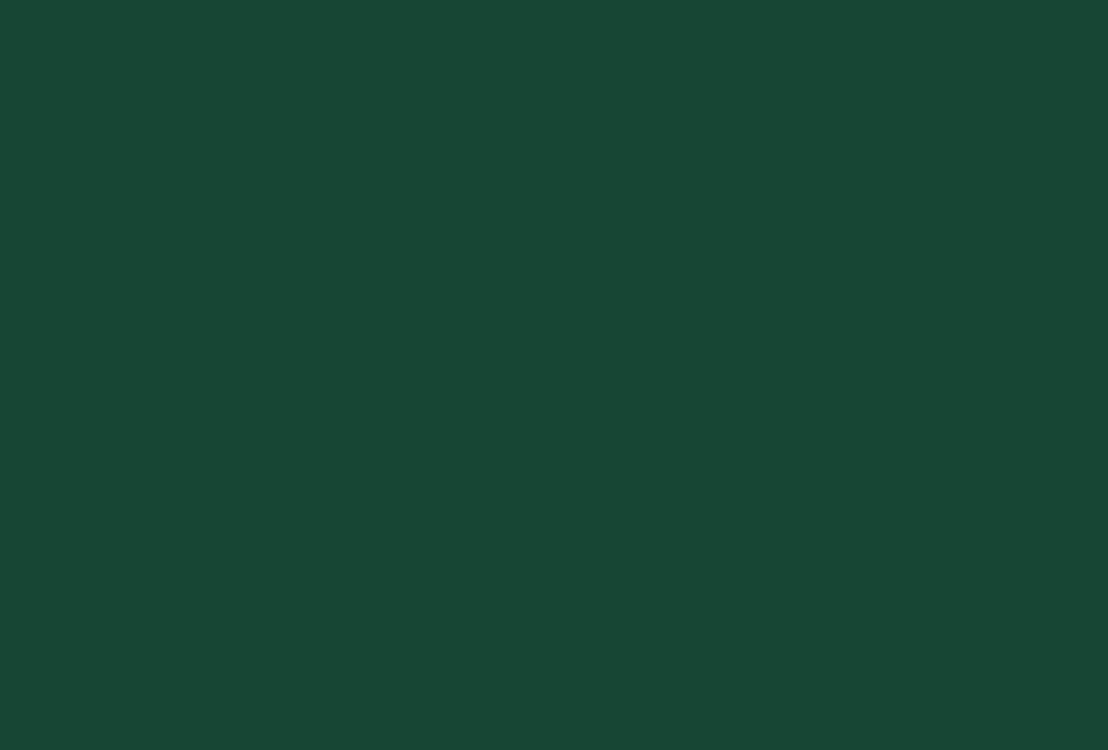 NDI-Nordic Drone inititative